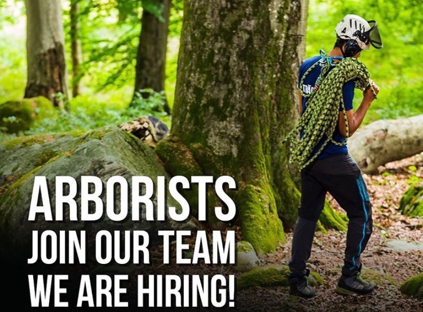 Arborists, Join our team, we are hiring!